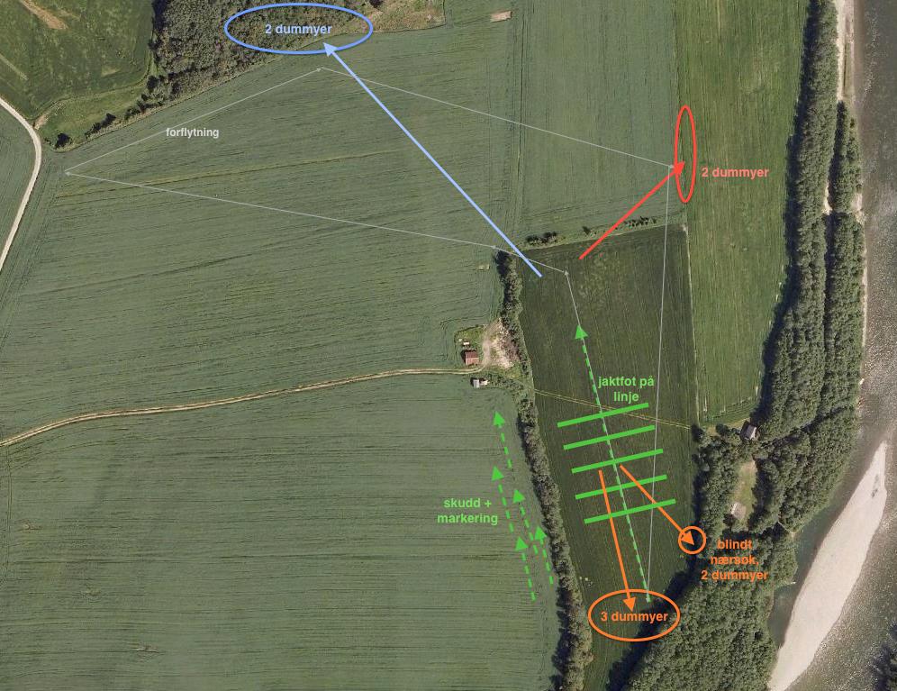Jakttrening Melhus 22. mars 2015